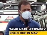 Video : Rahul Gandhi Campaigns In AIADMK Strongholds In Tamil Nadu