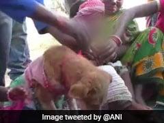 ओडिशा में बड़ी धूमधाम से दो बच्चों की कुत्ते से हुई शादी, बच्चों को बनाया गया दूल्हा और कुत्ता बना दुल्हन, जानें क्या है मामला