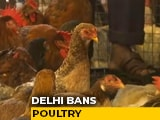 Video : Bird Flu: Sale Of Chicken Banned In Parts Of Delhi, Restaurants Warned