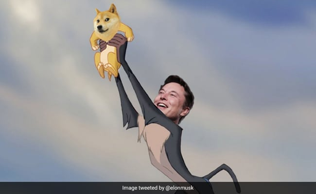 Dogecoin Sees Brief Rally After Elon Musk Tweets 'Baby Doge'   Technology  News