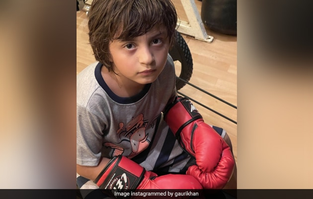 'My Mike Tyson': Gauri Khan's Caption For This Adorable Pic Of Son AbRam