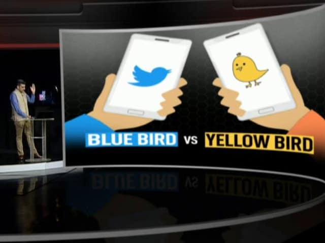 Video : Blue Bird vs Yellow Bird
