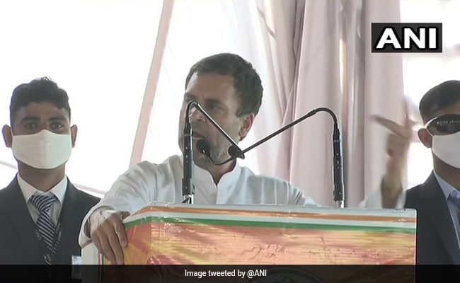 Rahul Gandhi To Address Farmers At Tractor Rallies In Rajasthan's Ajmer
