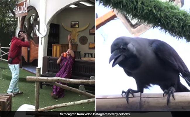 Bigg Boss 14: राखी सावंत ने छेड़े सुर तो कौवे लगे चिल्लाने, जान ने भी बंद कर लिए कान- देखें Video