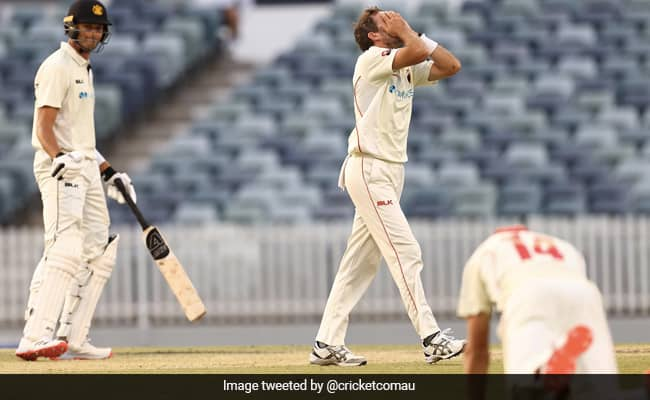 Western Australia vs South Australia Liam O'Connor barely manages to survive against Chadd Sayers in last-ball thriller Sheffield Shield Watch video