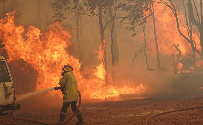 Western Australia's bushfire destroys over 70 homes