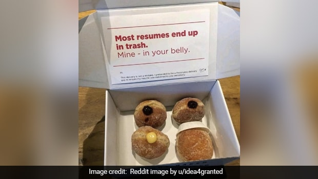 Unique 'Donut Box' Resume Goes Viral, Reddit Users Are Impressed