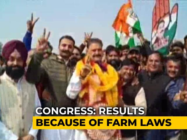 Video : Big Win For Congress In Punjab Local Elections