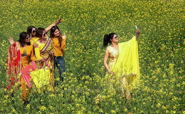 Basant Panchami 2021: Here's Why Yellow Is The Colour Of Basant Panchami