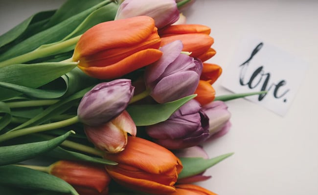 Valentine's Day 2021: A Dozen Valentine's Day Cards And Wishes To Share - NDTV