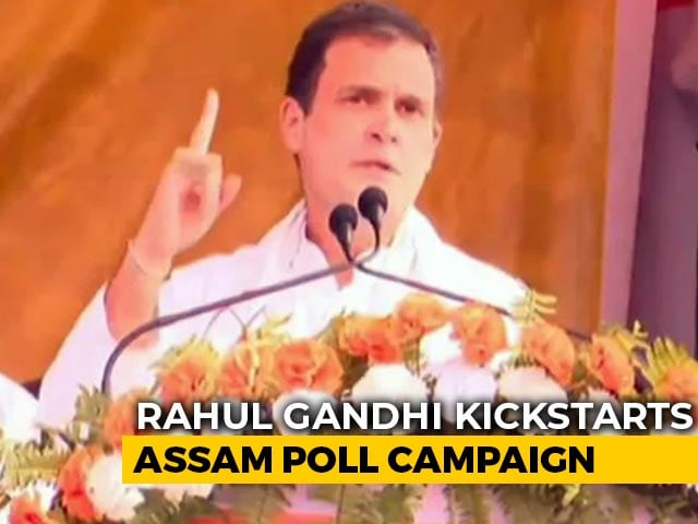 Video : No CAA In Assam If Congress Comes To Power, Says Rahul Gandhi