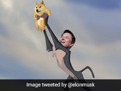 Dogecoin Sees Brief Rally After Elon Musk Tweets 'Baby Doge'