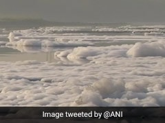 River Yamuna Spews Toxic Foam Again. See Photos