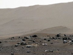 NASA Releases Mars Landing Site Panorama Taken By Perseverance Rover