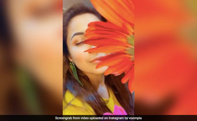 पंजाब की कैटरीना कैफ ने दिखाया जबरदस्त अंदाज, देखें शहनाज गिल का वायरल Video