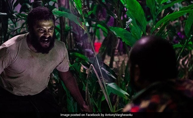 Oscars 2021: India's Official Entry Jallikattu Fails To Make International Film Shortlist