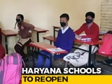 Video : Haryana Schools To Reopen For Classes 3 To 5 From Wednesday