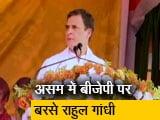 Videos : कांग्रेस नेता राहुल गांधी असम में कांग्रेस के चुनाव प्रचार को धार देने पहुंचे