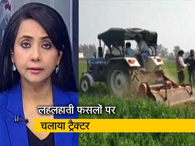 Videos : देस की बात : किसानों ने गेहूं की खड़ी फसल की नष्ट, केजरीवाल से मिले यूपी के किसान नेता