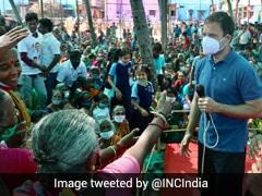 Rahul Gandhi Calls For Fisheries Ministry. Minister's Retort In Italian