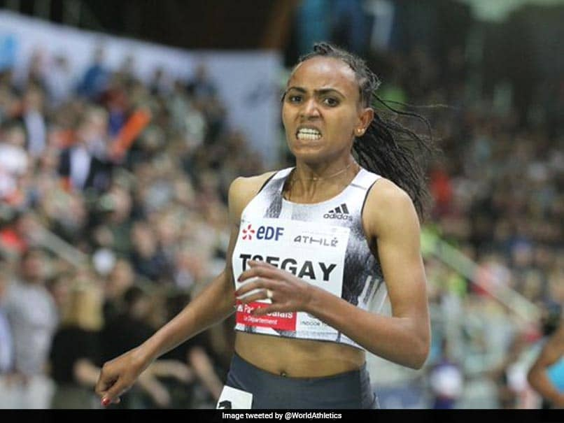 Ethiopias Gudaf Tsegay Breaks Womens 1500m Indoor World Record
