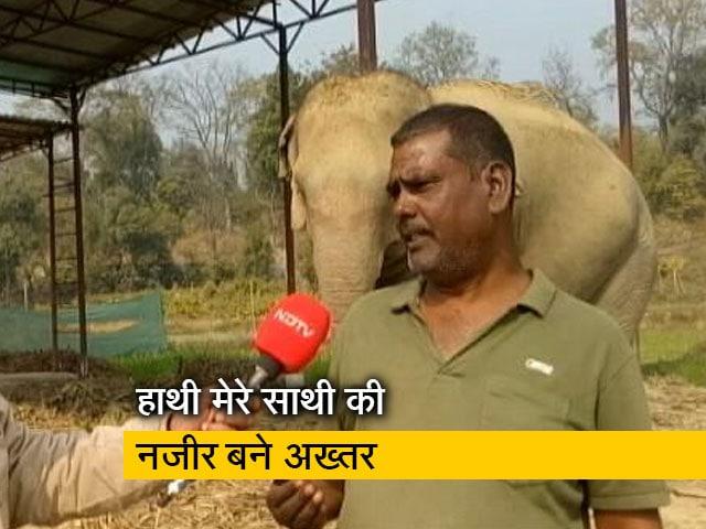 Video : रवीश कुमार का प्राइम टाइम : अख्तर ने बीमार हाथियों के लिए दान की 5 करोड़ की जमीन
