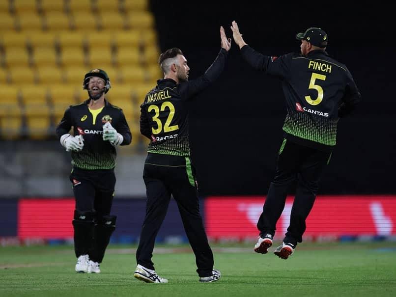 New Zealand vs Australia: Aaron Finch, Bowlers Help Australia Beat New Zealand By 50 Runs In 4th T20I