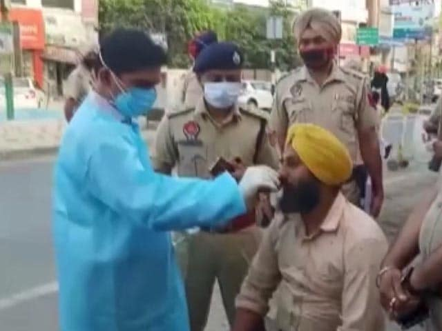 Video : People Without Masks Undergo COVID-19 Tests In Punjab. Watch