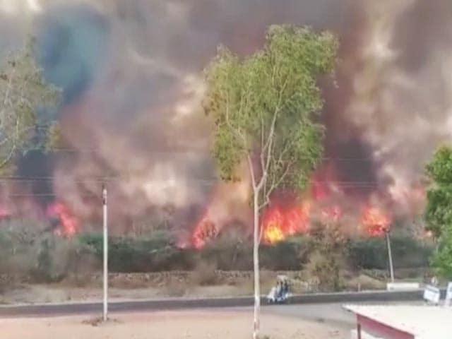 Videos : राजस्थान: डूंगरपुर के जंगलों में लगी भीषण आग