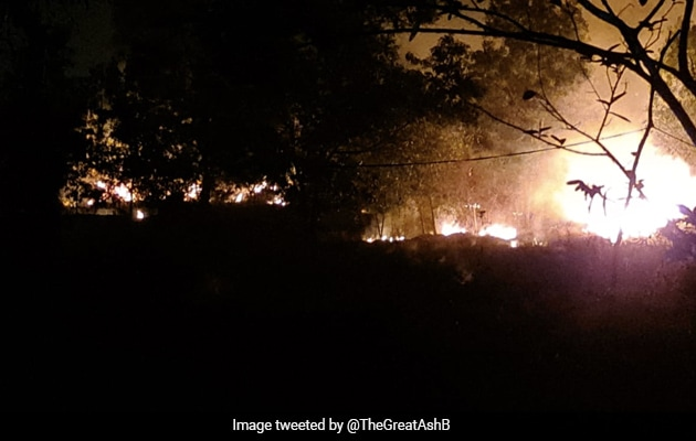 Simlipal Forest Fire: Experts To Help Odisha Government, Says Minister