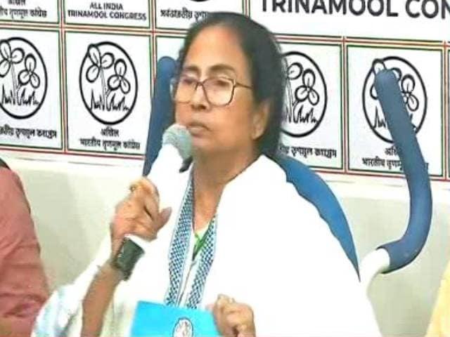 Video : Mamata Banerjee Promises Minimum Annual Income In Trinamool Manifesto
