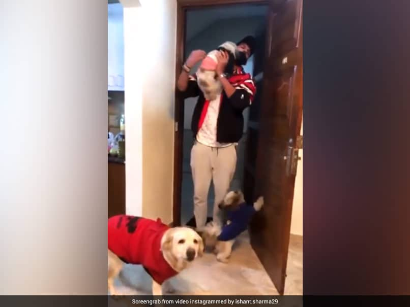 Watch: Ishant Sharma Gets Warm Welcome From Pet Dogs As He Reaches Home After Test Series Triumph Over England