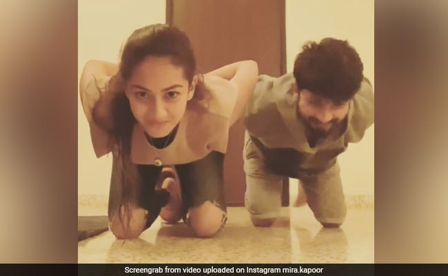 Shahid Kapoor Nails The Centre Of Gravity Challenge Like A Pro. Wife Mira Rajput Is Impressed - NDTV