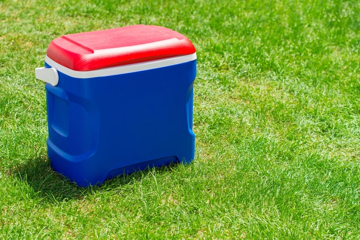 These Ice Boxes Are Just Perfect To Carry Drinks During Your Outings