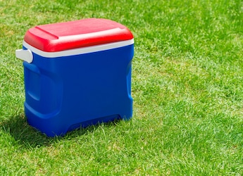 4 Ice Box Options That Are Handy And Perfect To Store Juices, Sausages And More