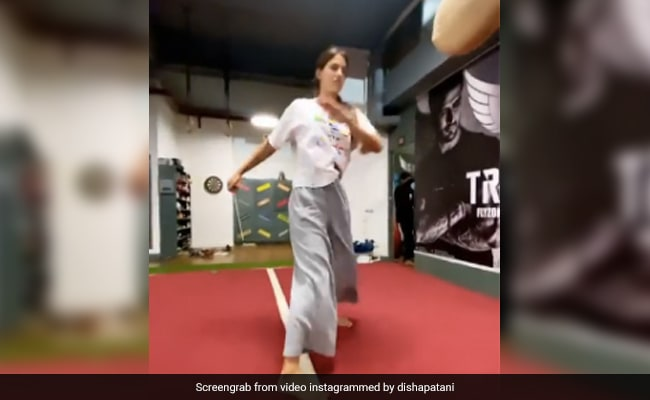 Disha Patani did a dangerous stunt, jumped in the air and looked like Tiger Shroff ...