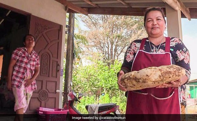 Woman Finds Strange Lump While Walking On Beach. It's Actually Worth Crores