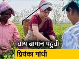 Video : असम में प्रियंका गांधी चाय बागान के वर्करों के बीच पहुंचीं, समस्याओं को सुना