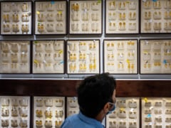 India's Biggest Jeweler IPO Opens Next Week as Economy Recovers