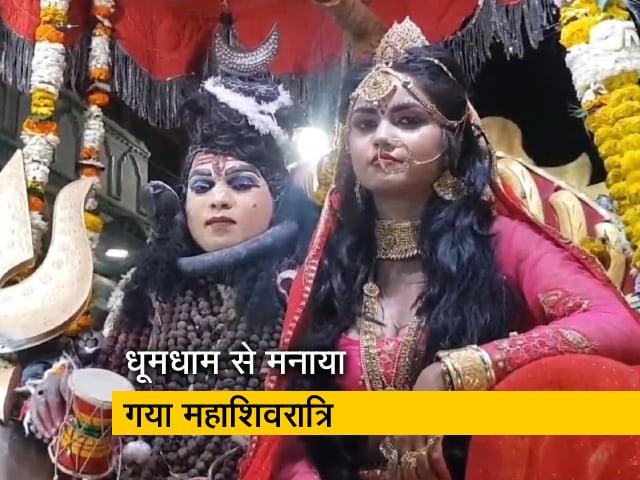 Video : देश में धूमधाम से मनाई गई महाशिवरात्रि, मंदिरों में शिव भक्तों की भीड़