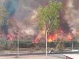Video : राजस्थान: डूंगरपुर के जंगलों में लगी भीषण आग