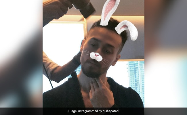 """Shine Bright Like A Bunny Every Day"": Disha Patani's Birthday Wish For ""Casanova"" Tiger Shroff Is As Fun As He Is"