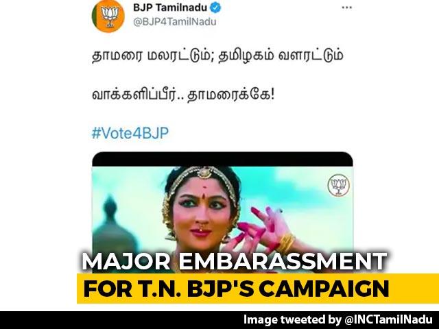 "Video : ""Ridiculous..."": Artiste Srinidhi Chidambaram On Tamil Nadu BJP's Tweet"
