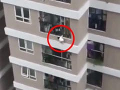 Delivery Driver Catches Toddler Who Fell From 12th Storey. Watch