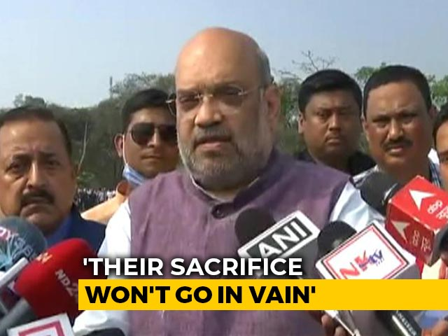 Video : Government Will Continue Fight Against Enemies Of Peace: Amit Shah