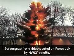 Dramatic Video Shows Lightning Strike Destroying A Tree