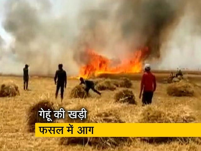 Videos : देश प्रदेश : यूपी के बलिया में आग लगने से करीब 20 बीघा फसल राख
