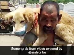 शख्स ने खुद को छोड़ कुत्ते को पहनाया मास्क, लोगों ने किए सवाल, तो बोला - खुद मर जाउंगा, इसे नहीं मरने दूंगा - देखें Video
