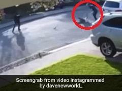 Viral Video: Man Body-Slams Robber Who Held Him At Gunpoint