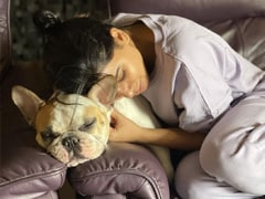Samantha Ruth Prabhu Shares A Glimpse Of Her Morning With Pet Pooch Hash